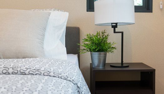 modern bedroom with white lamp and plants on table at home